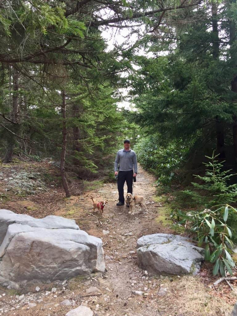 dolly sods trailhead dog hike