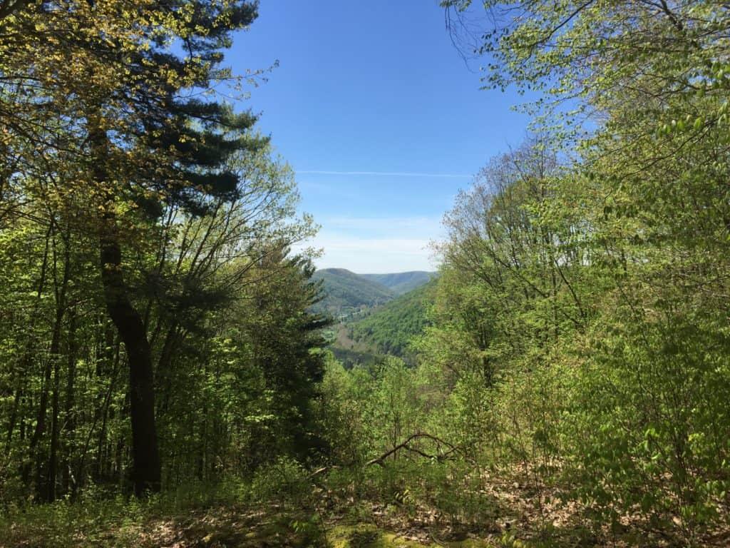 sizerville nature trail lookout
