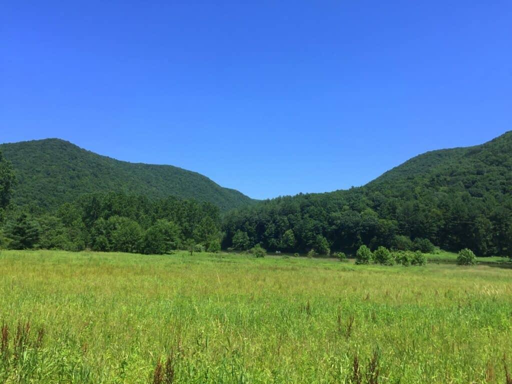 lowlands trail landscape at sinnemahoning state park 2