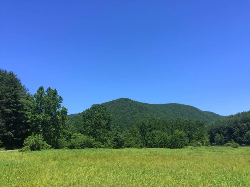 lowlands trail landscape at sinnemahoning state park 1