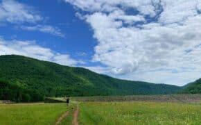 little pine state park header photo