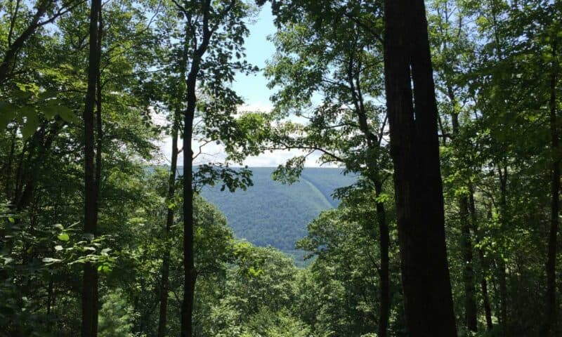 hyner run state park overlook