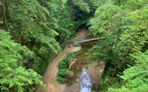 hocking hills state park overview shot