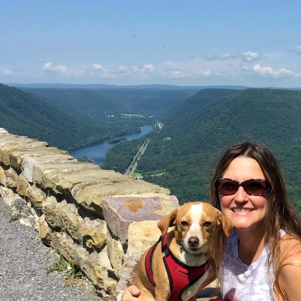 hyner view overlook with hazel