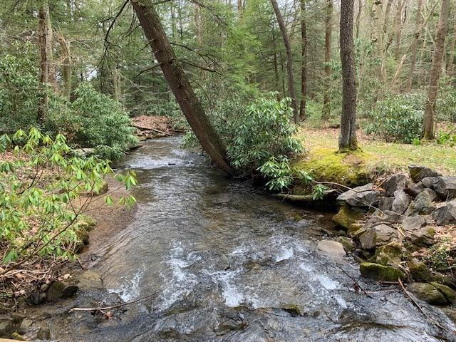 Kooser State Park Creek
