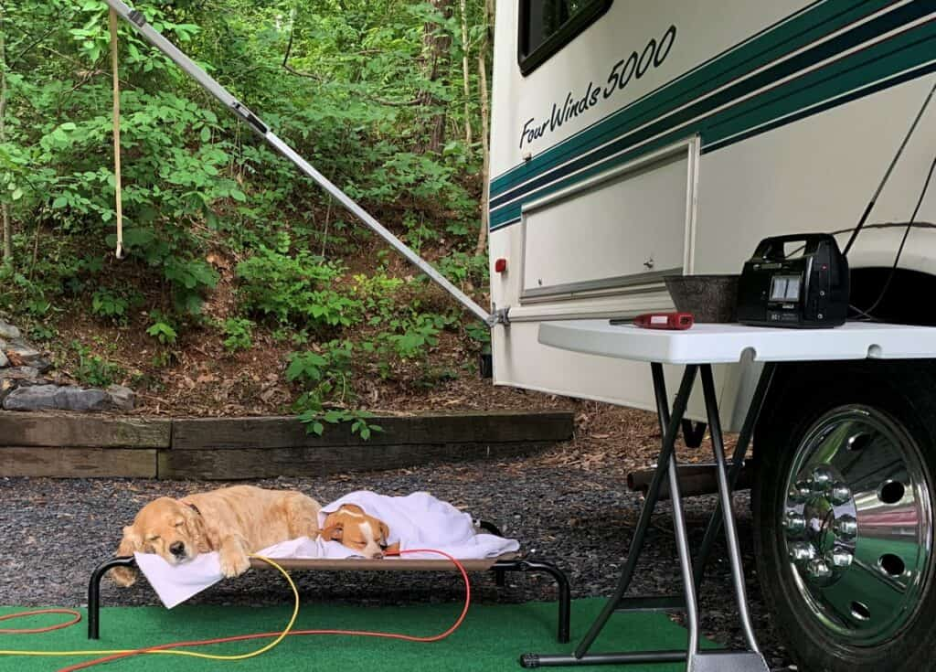 afternoon nap at campground