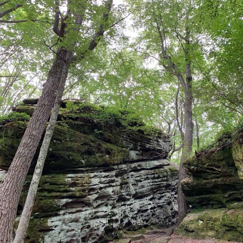 beartown rocks rocks