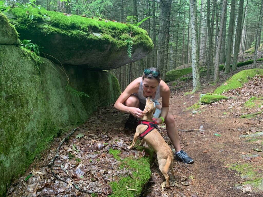 clear creek trail rock outcrop with hazel