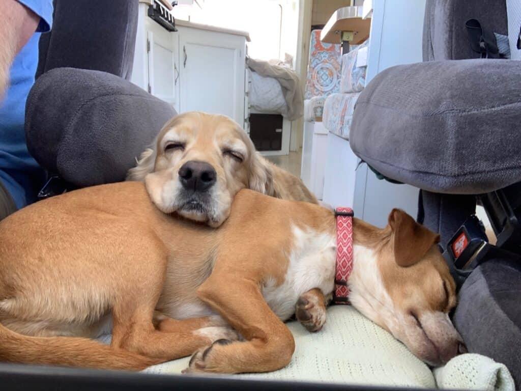 franklin and hazel rv sleeping