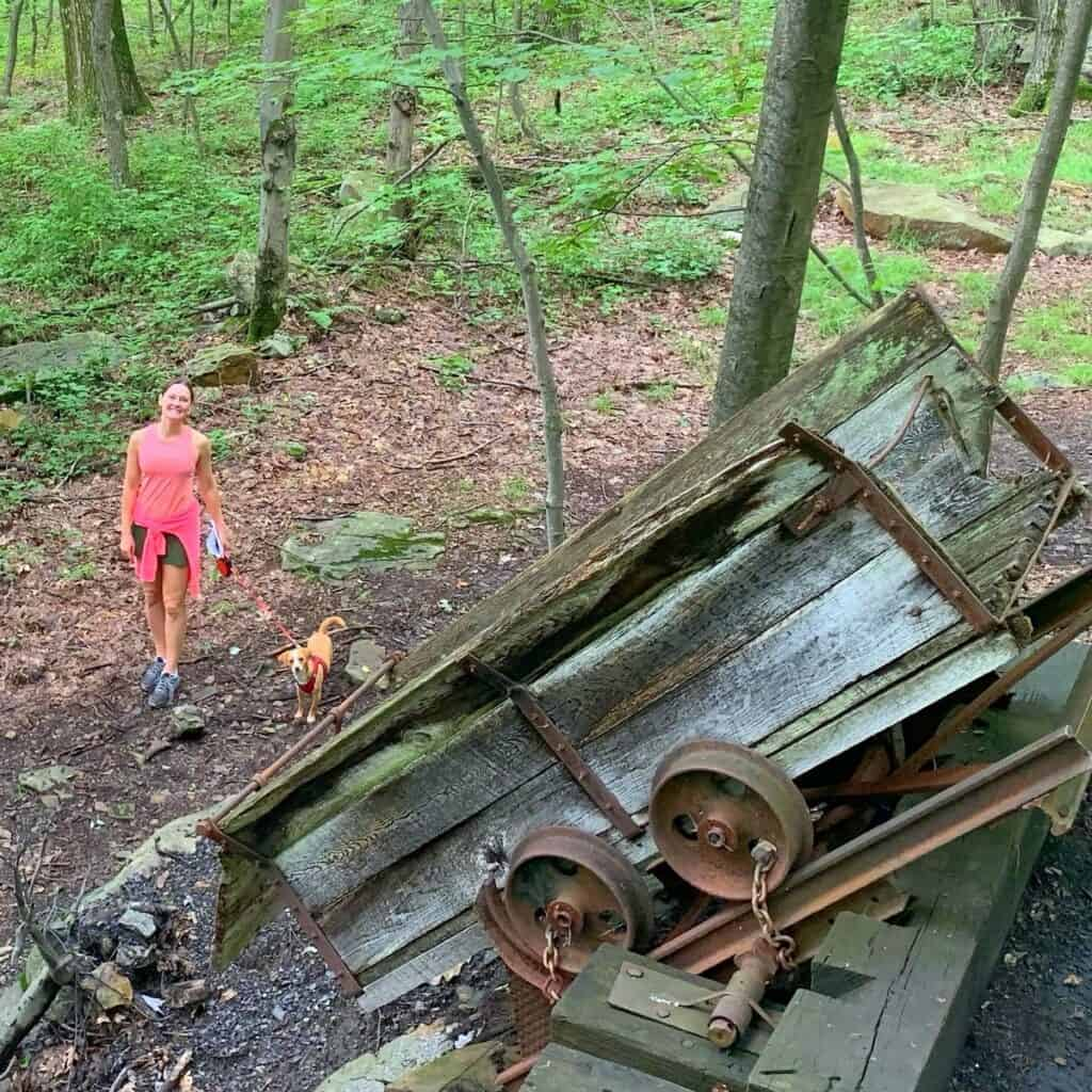 deep creek lake state park brant mine cart from above