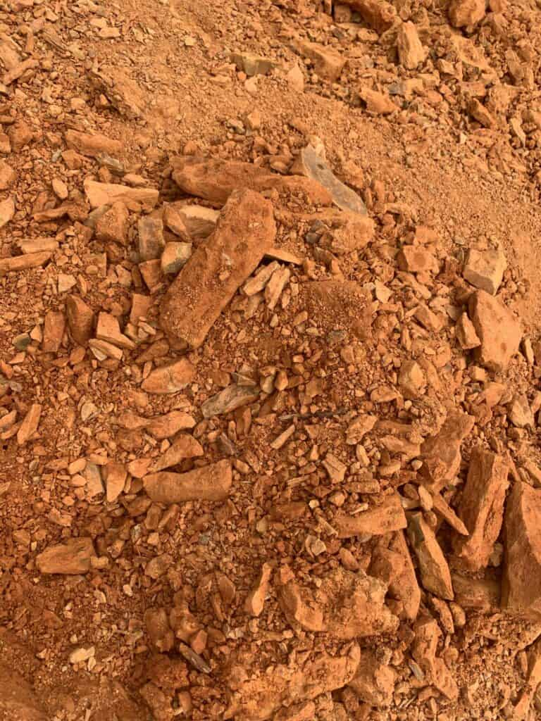 swatara state park close up fossil field